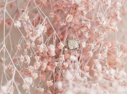 mintroom-biancanico-purpletreephoto-8