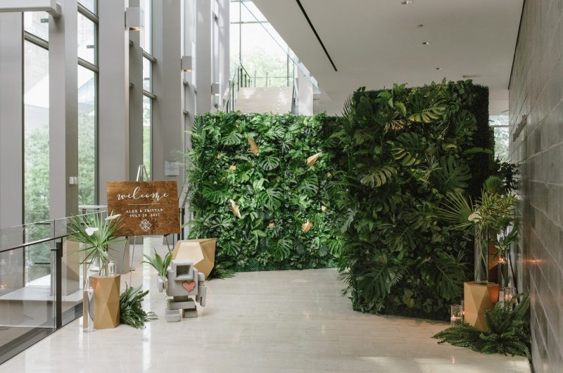 Tropical Elegance at The Royal Conservatory of Music