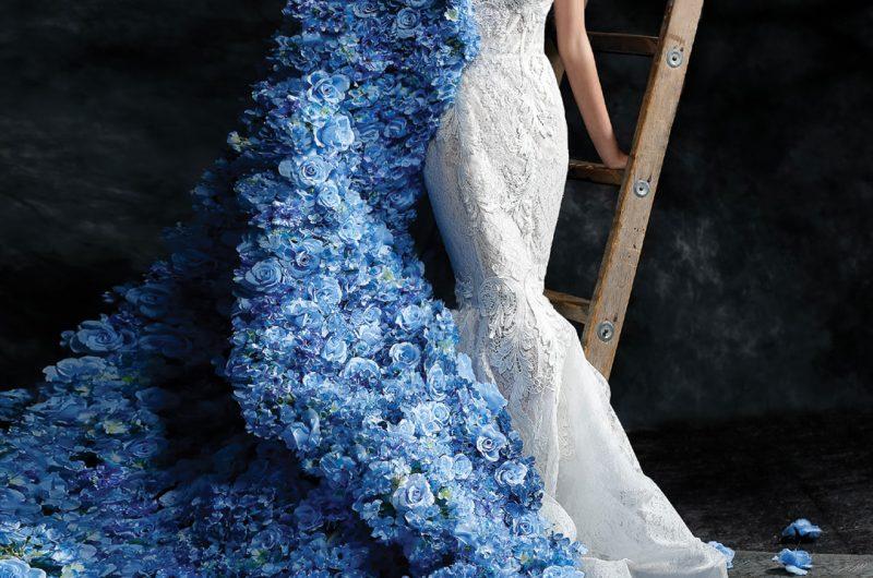 Blue Cape Photoshoot